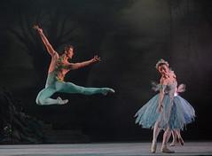 The Dream - Mathias Dingman (Ruth Brill) (DanceTabs) Tags: ballet dance ashton brb hippodrome birminghamroyalballet