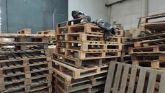 DSCN2262 (MPT-RJ) Tags: mar chins chineses bonsucesso trabalhoescravo importadora combateaotrabalhoescravo dianacionaldecombateaotrabalhoescravo operaoyulin