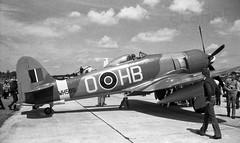 CF-CHB Hawker Sea Fury FB.11 c/n 41H/636336 as WH589 (eLaReF) Tags: sea cn common fury hawker ormond haydon baillie greenham wh589 cfchb fb11 41h636336