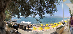Panorama (Ed.ward) Tags: sea panorama holiday tree turkey restaurant mediterranean hills umbrellas mediterraneansea hugin 2015 sunbeds aegeansea ozkan bodrumpeninsula gulluk nikond700 ozkanbeach