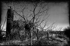 All But Forgotten B/W (Groovyal) Tags: texas tank memories pump forgotten oil past oilrig roughneck oilfeild