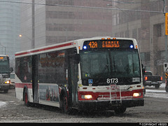 Toronto Transit Commission #8173 (vb5215's Transportation Gallery) Tags: toronto ttc transit orion ng commission vii 2010
