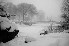 Bow Bridge from the Woods (Takhte-Sarah) Tags: newyorkcity newyork centralpark snowstorm blizzard snowday bowbridge snowzilla centralparkbridge snowpacolypse