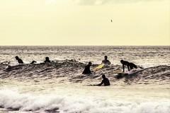 DSC_8470 (2) (Donnie Nicholson) Tags: waves surfer rockawaybeach surfergirl yesterdayswaves