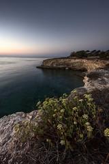 scogliere della marchesa (Massimo Distefano) Tags: sea mare cielo sicily sicilia siracusa scogliere marchesa