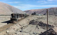 Lonely telegraph pole (david_gubler) Tags: train railway llanta potrerillos diegodealmagro ferronor