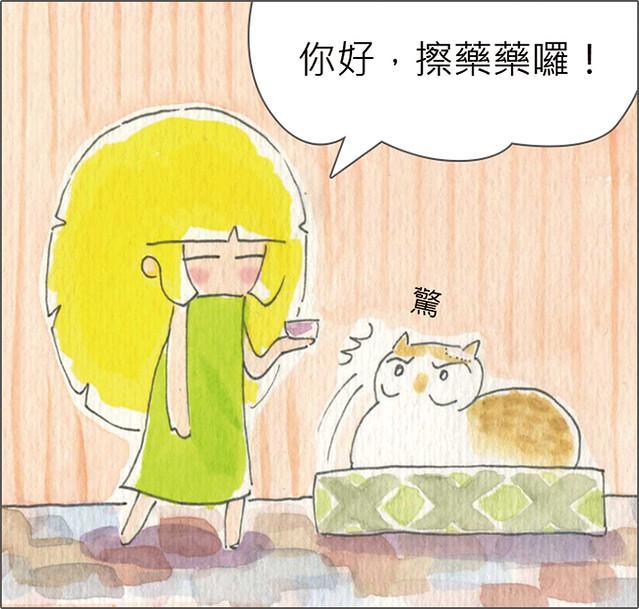 家裡來了一隻貓 貓咪聽得懂人話