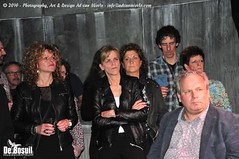 2016 Bosuil-Het publiek bij The Paladins en Cats on the Corner 10