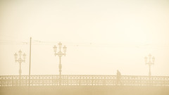 Stockholm, October 15, 2015 (Ulf Bodin) Tags: bridge autumn sun mist monochrome silhouette fog sunrise se sweden stockholm outdoor sverige bro hst djurgrden dimma djurgrdsbron stockholmsln canoneosm3 canonefm55200mmf4563isstm