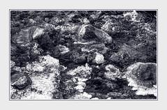 - File1208 (Ferruccio Jochler) Tags: gelo pietre acqua ghiaccio torrente
