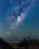 30 Mar, 2016. Rising from the rushes. (nightscapades) Tags: longexposure sky beach night stars coast timelapse bush au sydney australia astrophotography newsouthwales astronomy nightscapes wollongong milkyway garie royalnationalpark gariebeach galacticcore