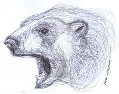 oso a lapicero (ivanutrera) Tags: bear wild animal pen oso sketch drawing wildlife draw dibujo lapicero boligrafo dibujoalapicero dibujoenboligrafo