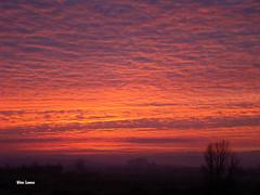 Nuvens coloridas (verridrio) Tags: morning light sky orange sun clouds sunrise dawn heaven alba sony himmel wolken amanecer ciel cielo serenity nubes nuvens nuages  morgen bulutlar ceu madrugada nascerdosol mondego nubi  morgendmmerung chmury serenidade    verride
