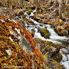 Mountain River Flowing (Fabrizio Malisan Photography @fabulouSport) Tags: trees naturaleza mountain nature water montagne river flow outdoors moss rocks natural outdoor riviere fiume natur natura flowing montagna montagnes fiumi