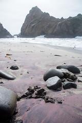 pfeiffer beach (jkenning) Tags: bigsur pfeifferbeach 2016 purplesand