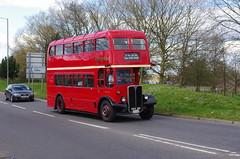 IMGP0100 (Steve Guess) Tags: uk england bus london museum transport surrey gb cobham regent weybridge brooklands weymann aec rlh byfleet lowhight rlh61 mxx261