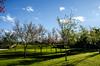 Parque Tanguá (Dani Uribe P.) Tags: parque verde brasil curitiba árbol entrada otoño árvore outono tanguá