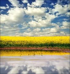 Neather on the earth, nor in heaven (Katarina 2353) Tags: film nature landscape nikon serbia srbija katarinastefanovic katarina2353