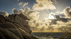Facing the Sun (GLN IMAGES) Tags: sunset nikon australia sugarloaf d7100