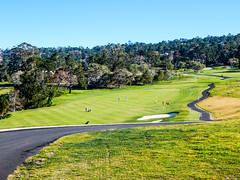20160406-DSCN3504 (sabrina.hill) Tags: california golf pebblebeach montereycounty