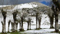 Aizkorri- Aratz Natural Park (arka76) Tags: white mountains landscape nieve paisaje euskalherria euskadi basquecountry aranzazu aizkorri montaismo mendiak paisajismo aratz 50faves mendizale basquemountains