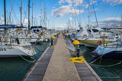 Marina ! Seaside ! (antoninao) Tags: alberi marina canon orlando nuvole mare barche porto cielo abruzzo antonina pescara pontile 5dmarkiii florviva