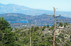 Lake Arrowhead from Arrow Bear, CA 4-16 (inkknife_2000 (6 million views +)) Tags: usa forest landscape mountainlake deadtrees sanbernardinomountains caliofornia lakearrowheadca dgrahamphoto