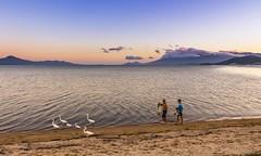 Danilo Sperling (sperlingdanilo1) Tags: sunset brazil sol praia beach brasil do florianopolis por pescador
