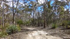 Para Wirra 16 (WEA Ramblers) Tags: hiking australia bushwalking southaustralia parawirra yattalunga fayharding