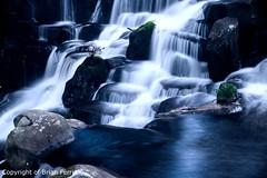 IMGP1266 (acornuser) Tags: park trees blackandwhite bw reflection water woodland garden landscape waterfall spring surrey cascade virginiawater blosom sigma1770 pentaxk3