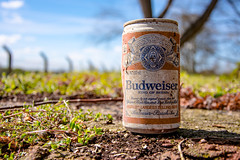 King of Beers (StevePilbrow) Tags: old blue red sky brown abstract tree green heritage beer field vintage nikon dof drink bokeh centre sunday can alcohol april bud 1970s nikkor budweiser depth oxfordshire scramble bicester 2016 18105mm d7200