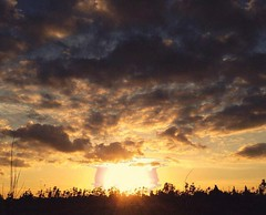 Ominous Sunset (jerimiah1martinez) Tags: california travel family sunset window nature childhood cali marketing photo dusk ominous nuclear amtrak fresno valley wtf changes caption branding sanjoaquin sunsetting northkorea centralvalley nuke centralcalifornia sanjoaquinvalley premonition bornandraised
