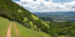 Hillside Trail (Matt McLean) Tags: california landscape hiking marin hike hills trail bayarea novato burdell
