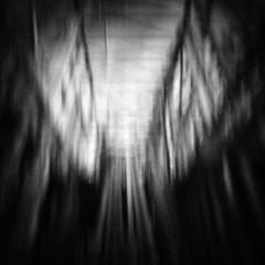 Lumber (rustman) Tags: blackandwhite bw square iso3200 grain 11 pinhole slit worldwidepinholephotographyday 22mm gf1 f128 dynamicblackandwhite panasoniclumixgf1 pinwide wanderlustpinwideslit