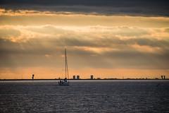 Sailing (Infomastern) Tags: sunset sea water malm vatten hav solnedgng sibbarp