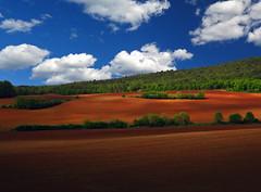 Terra di Siena (Robyn Hooz) Tags: trees color by alberi clouds nuvole ground via soil tuscany siena passenger toscana terra monteriggioni viandante