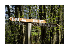 Take your pick (hehaden) Tags: sign sussex wooden woods signpost heavenfarm
