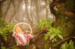 Dnde ests Caperucita? (inma F) Tags: arbol cuento comida bosque lasmercedes cesto anaga
