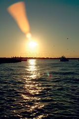 BLH03 (forthemassesstudio) Tags: ocean sea sun lighthouse texture beach nature lines birds clouds boat newjersey fishing patterns nj wanderlust explore shore barnegat jerseyshore seashore oceancounty wander ocnj opensea