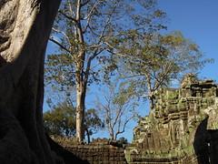 DSCN2311 (albyantoniazzi) Tags: voyage travel architecture cambodia angkorwat temples siemreap archeology kampuchea cambogia