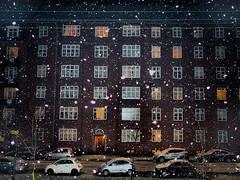 P1100194snefnug (klausen hald) Tags: winter snow copenhagen denmark vinter snowing snowfall
