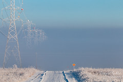 January 10, 2016 - Fog envelops powerlines and the road in Adams County. (Tony's Takes)