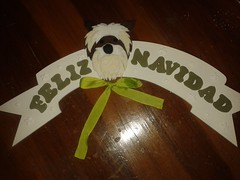 20150727_222205 (poyss) Tags: manualidad