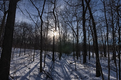 Snow Shadows and Tracks (MattPenning) Tags: winter sky snow clouds shadows pentax tracks sigma potd trail rays k5 springfieldillinois skyclouds mattpenning kmount lakespringfield sigma1020mmf456exdc mattpenningcom abrahamlincolnmemorialgarden penningphotography justpentax pentaxk5 winterlakespringfieldsnowice