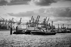 Sundays choppy water (Maike B) Tags: harbour hamburg hafen tugboats fairplay schlepper blachandwhite schwarzweis choppywater bugsier
