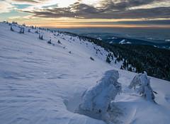Off-piste (janklvac) Tags: morning winter light orange white mountain snow color tree nature yellow clouds forest sunrise landscape woods hill hills czechrepublic jesenky
