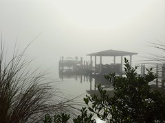 Mist on the river (EricWBrown) Tags: morning mist water river morninglight mood cellphone atmosphere cocoa android indianriver galaxys6