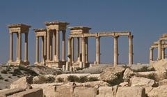 Palmyra (schreibtnix on'n off) Tags: blue sky travelling architecture reisen roman columns himmel architektur blau palmyra römisch säulen neareast naherosten olympuse5 schreibtnix تدمر