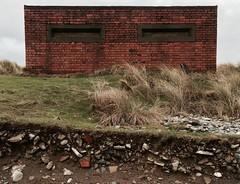 Y mr yn agosu (Rhisiart Hincks) Tags: building brick coast cymru erosion ceredigion sanddunes secondworldwar ynyslas bric arfordir aod briciau adeilad kembre glanymr achuimrigh kostalde twynitywod erydu tevennotraezh krignerezh ailryfelbyd eilbrezelbed