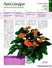 Комнатные и садовые растения от А до Я 48 15